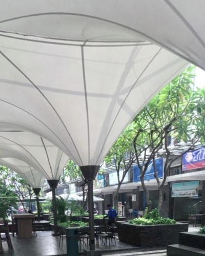 canopy membrane